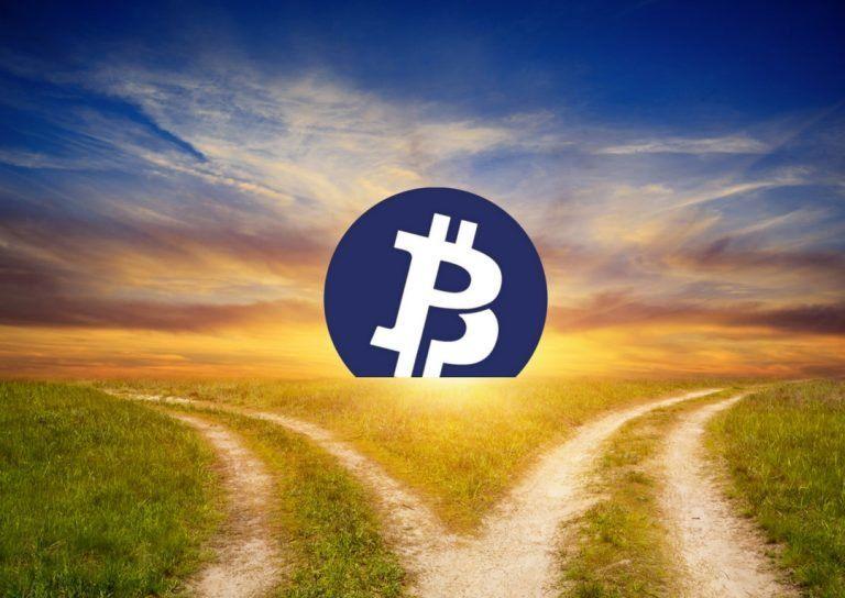 Вмире цифровых монет прибавление: Bitcoin Private откололся