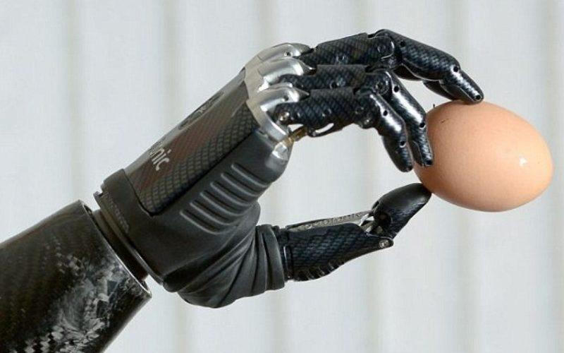 протез-рука, держащая в пальцах куриное яйцо