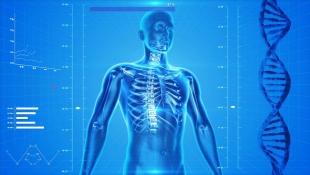 В России создали 3D-принтер для человеческих костей
