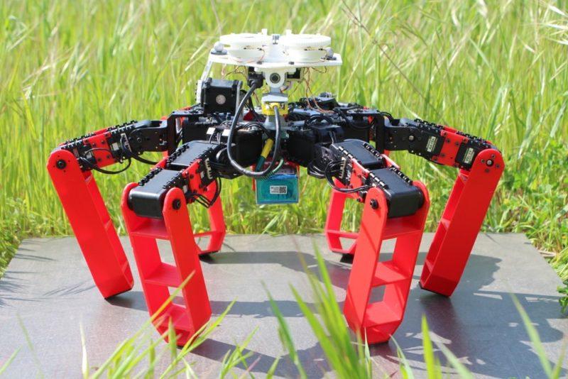 AntBot ориентируется без GPS