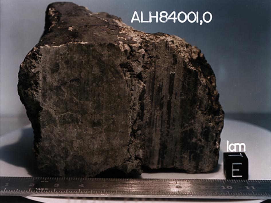МетеоритALH84001 / © NASA