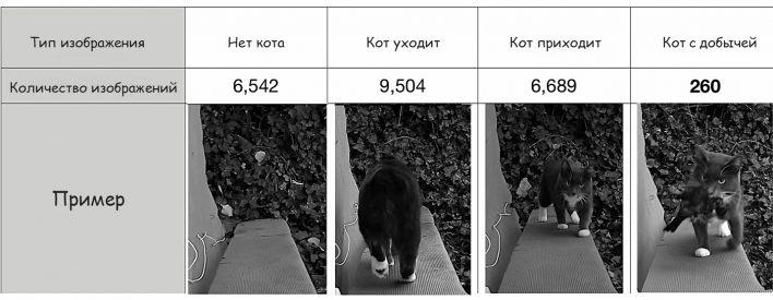 Инженер создал ИИ-дверь, не пропускающую кота в дом с добычей