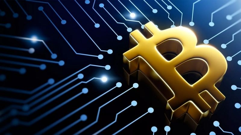 Исследование: спрос на биткоин остается высоким даже после халвинга