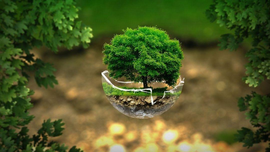 «Ростелеком» поддержал экологический конкурс «Территория завтра» в Нижнем Новгороде - фото 1