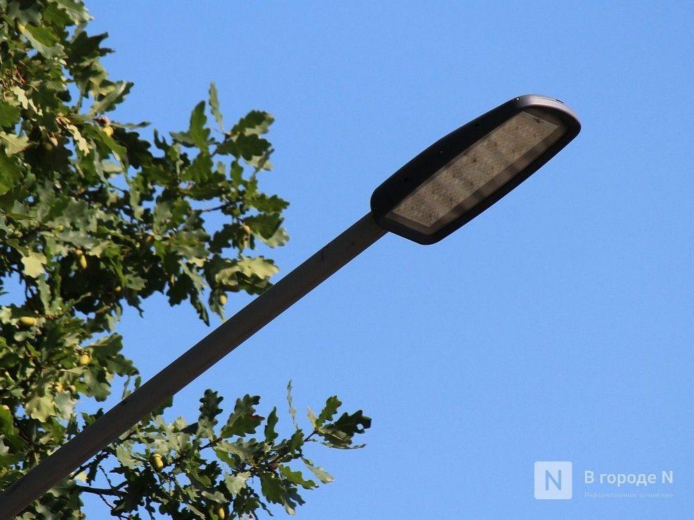 УФАС приостановило конкурс на замену фонарей в Нижнем Новгороде - фото 1