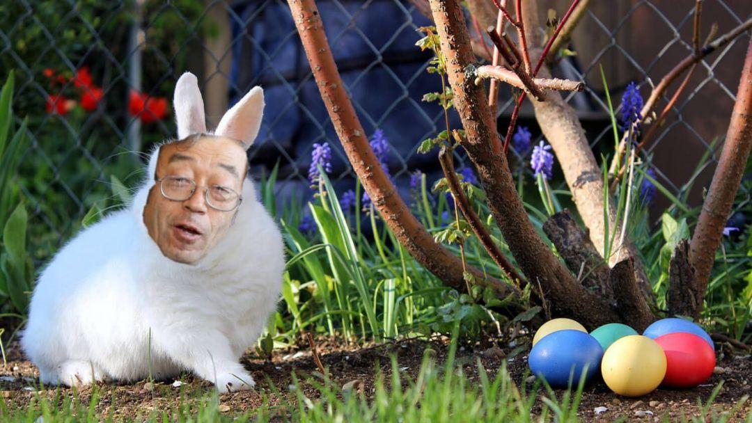 сатоши яйца транзакция